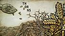 Thorns | Pastor Chris Screws
